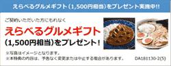 NTTifネットZurich成約キャンペーン